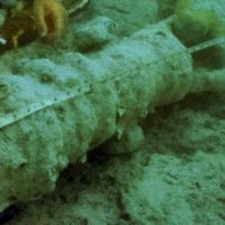 Underwater View of Swivel Gun (Detail)