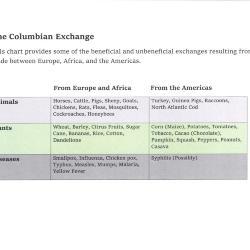 The Columbian Exchange Chart